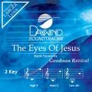 Eyes Of Jesus image