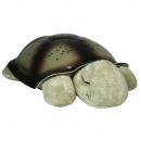 Twilight Turtle Classic