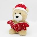 The True Story of Christmas Bear